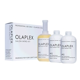 Показать информацию о Olaplex Salon Intro Kit
