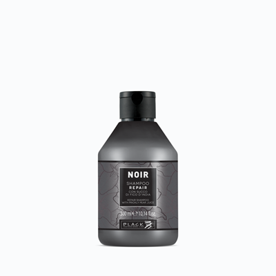 Picture of BLACK PROFESSIONAL LINE NOIR – REPAIR SHAMPOO WITH PRICKLY PEAR JUICE 300 ML