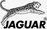 Picture for manufacturer JAGUAR