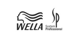 Picture for manufacturer WELLA SP